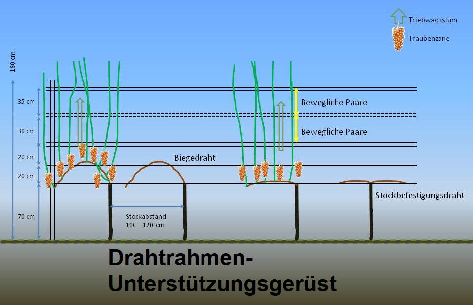 Großartig Drahtrahmen Diagramme Zeitgenössisch - Die Besten ...